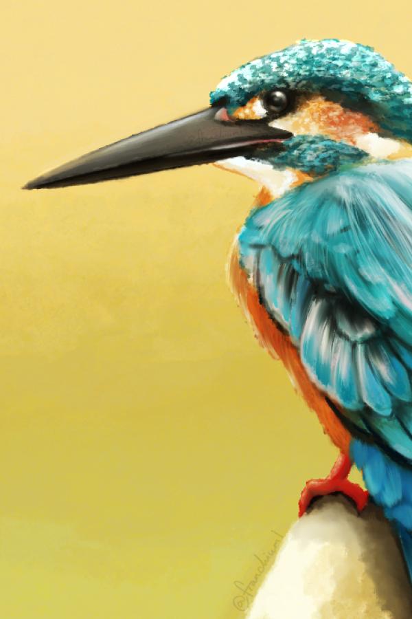 Hummingbird Thumbnail
